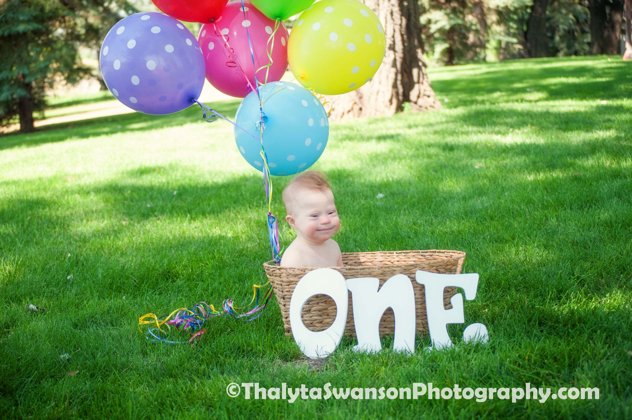 First Birthday Photos - Fort Collins Photography (5)