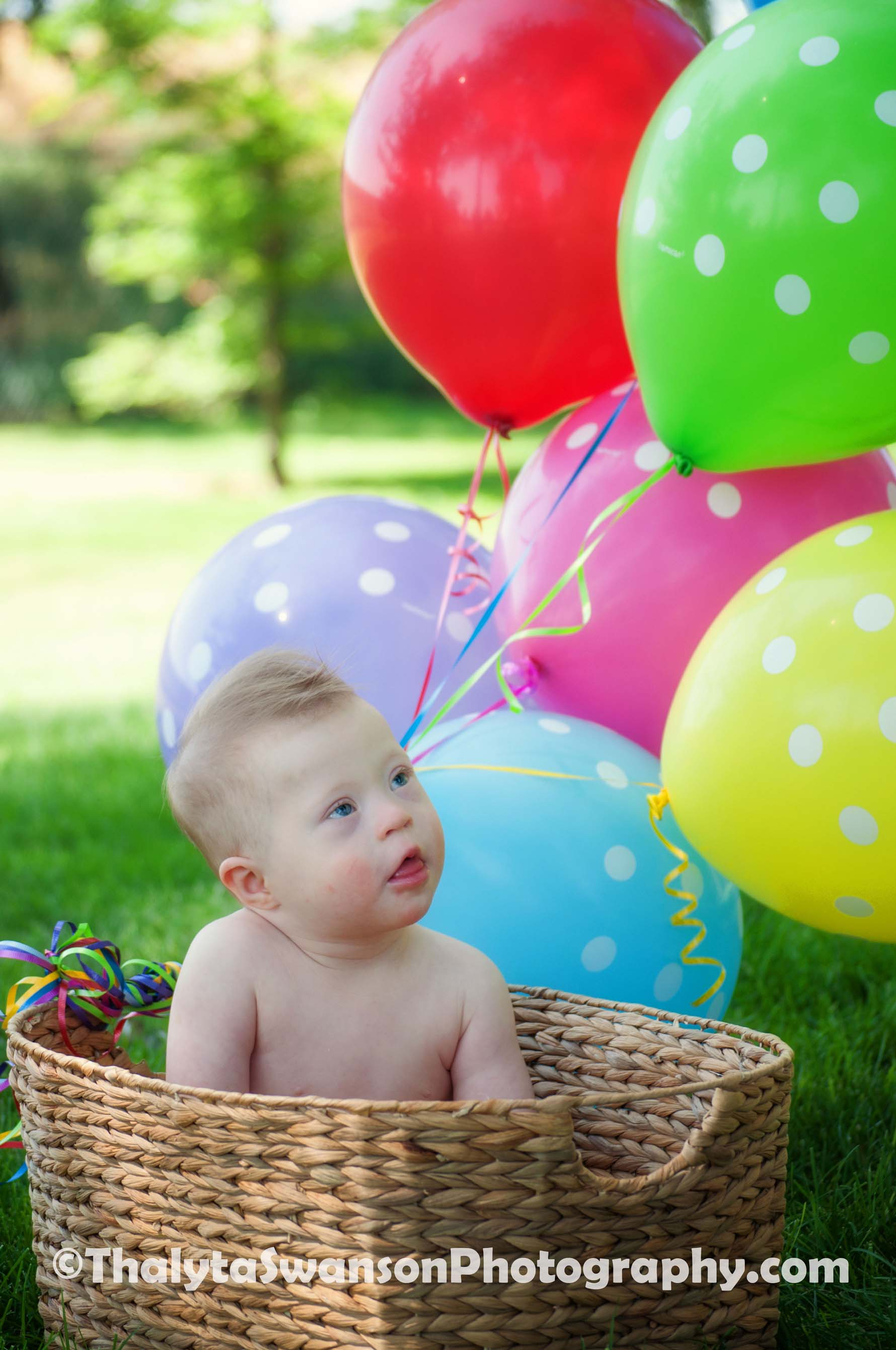 First Birthday Photos - Fort Collins Photography (6)