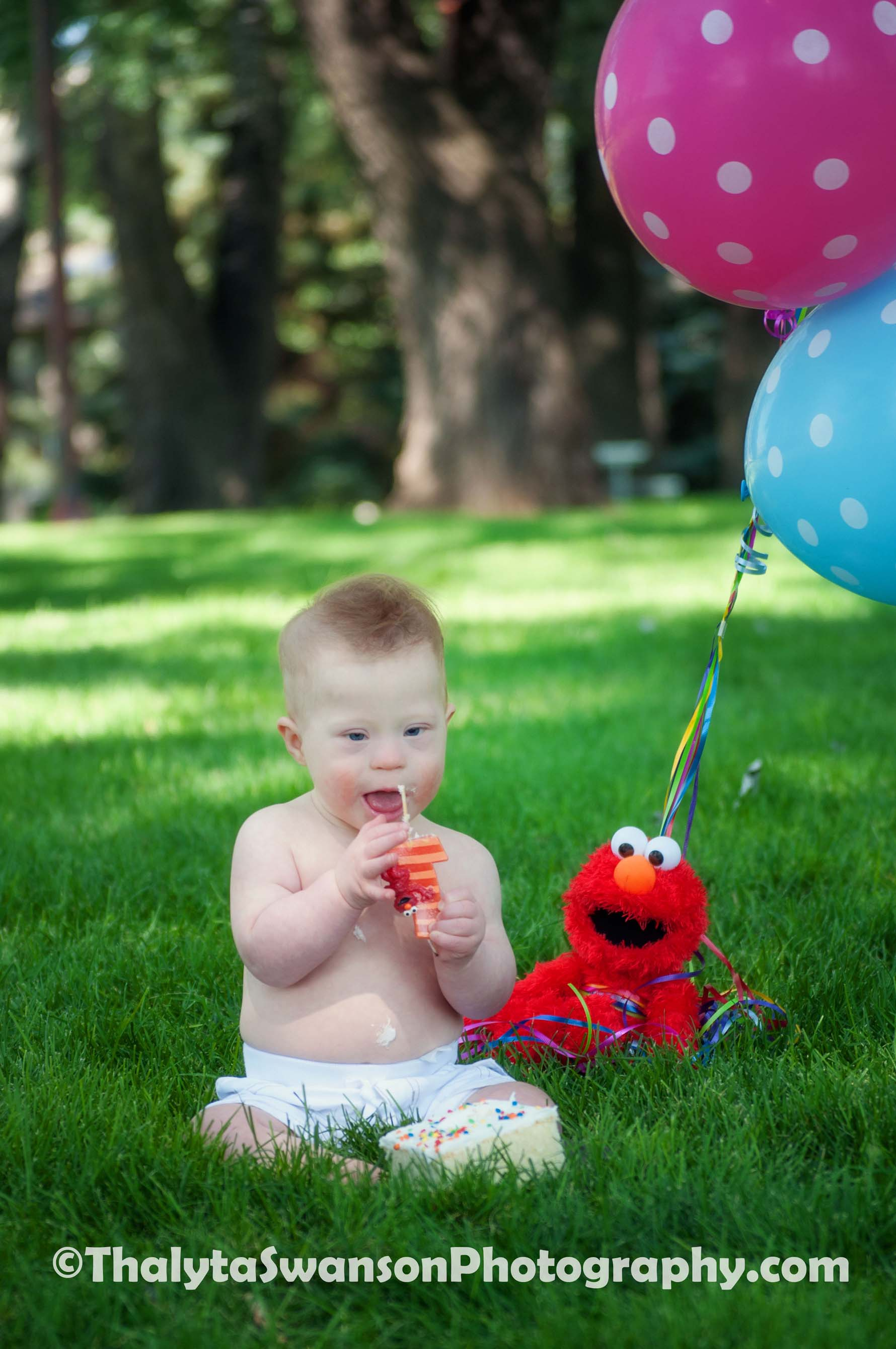 First Birthday Photos - Fort Collins Photography (9)