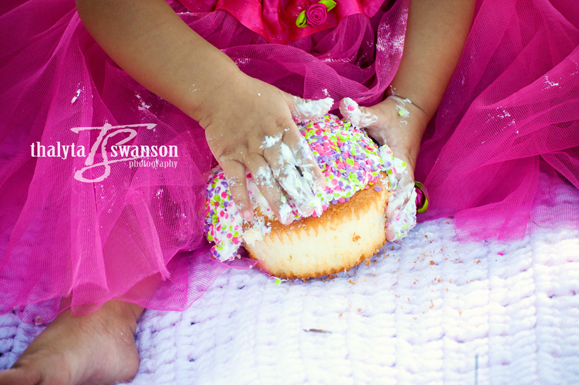 First Birthday Photos - Fort Collins Photographer  (6)