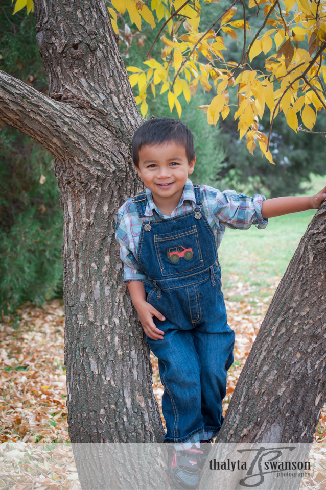 Fort Collins Photographer - Adorable Matthew (1)