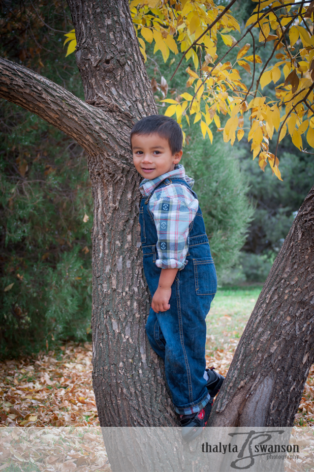 Fort Collins Photographer - Adorable Matthew (5)