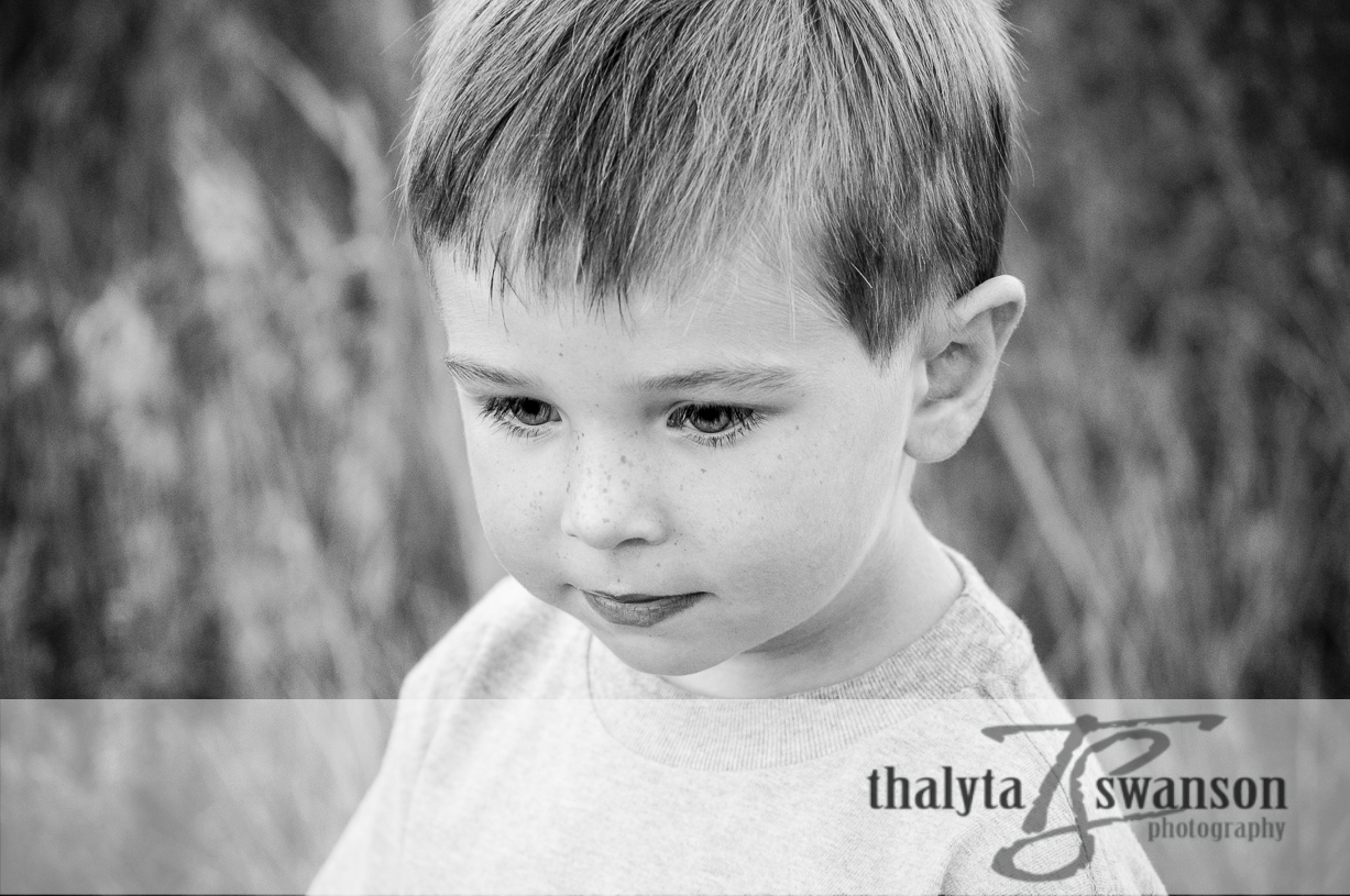 Fort Collins Photographer - Family Photography (7)