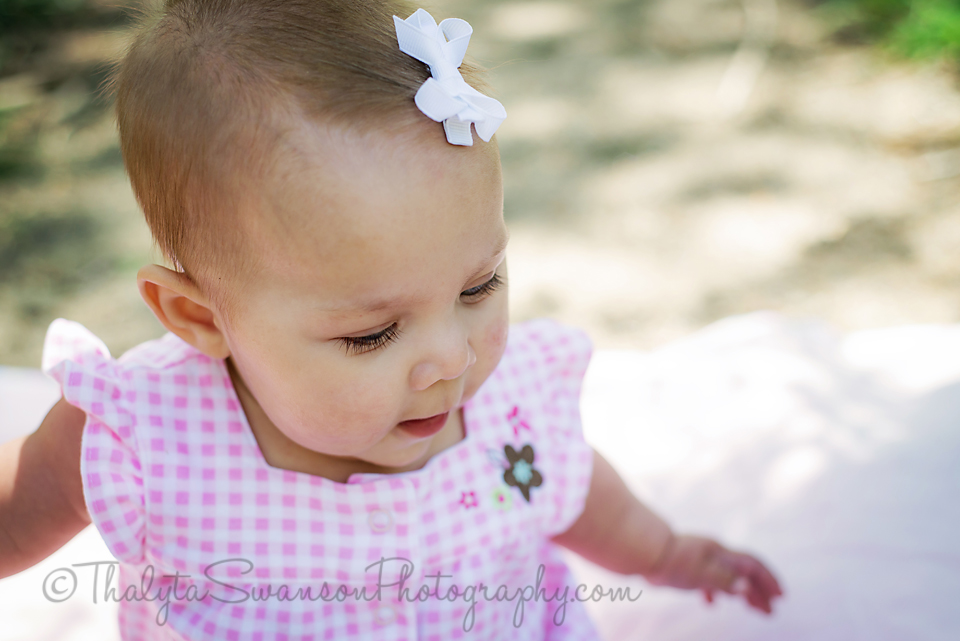 6 month old beauty - Fort Collins Photographer (1)