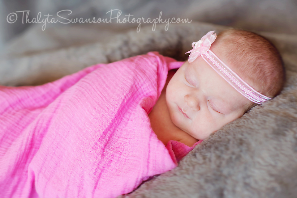 Fort Collins Photographer - Newborn Photography (1)