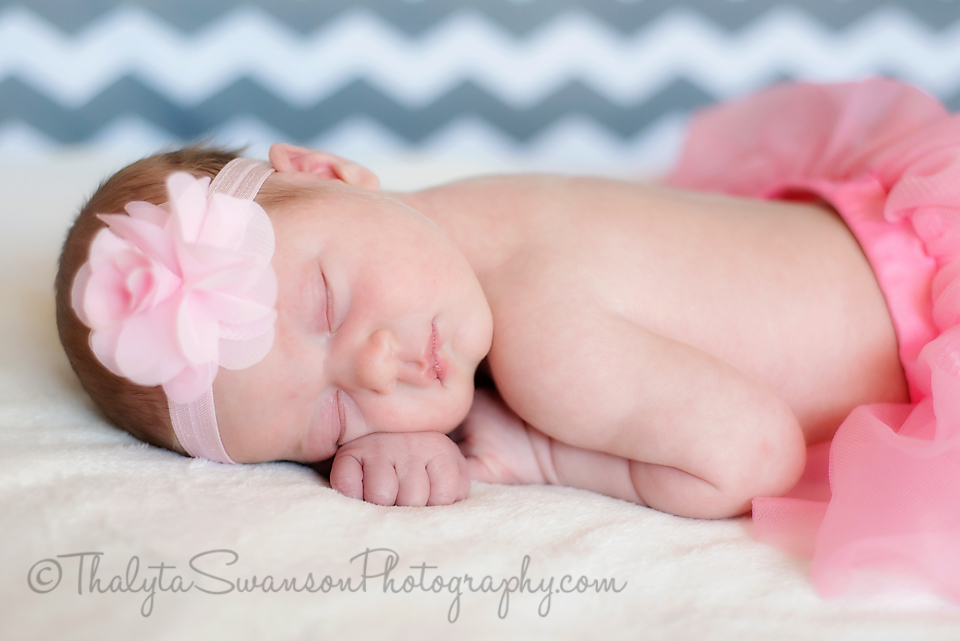 Fort Collins Photographer - Newborn Photography (2)