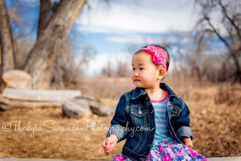 2 year old Photo Session - Fort Collins Photographer
