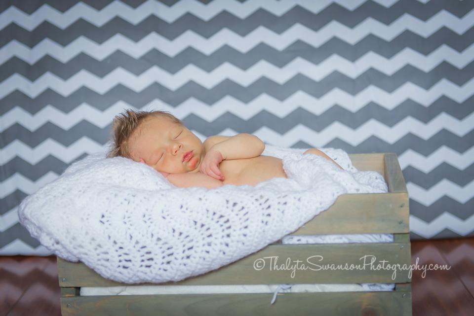 Fort Collins Photographer - Newborn Session (4)