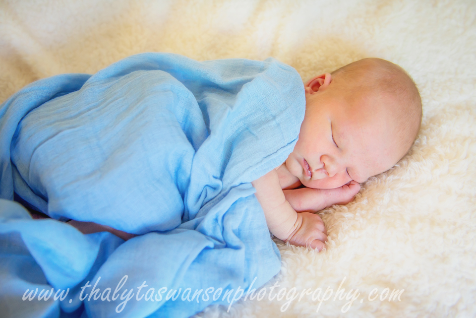 Newborn Photo Session - Fort Collins Photographer (2)