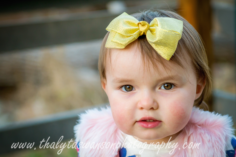 Adorable Fall Session - Thalyta Swanson Photography (4)