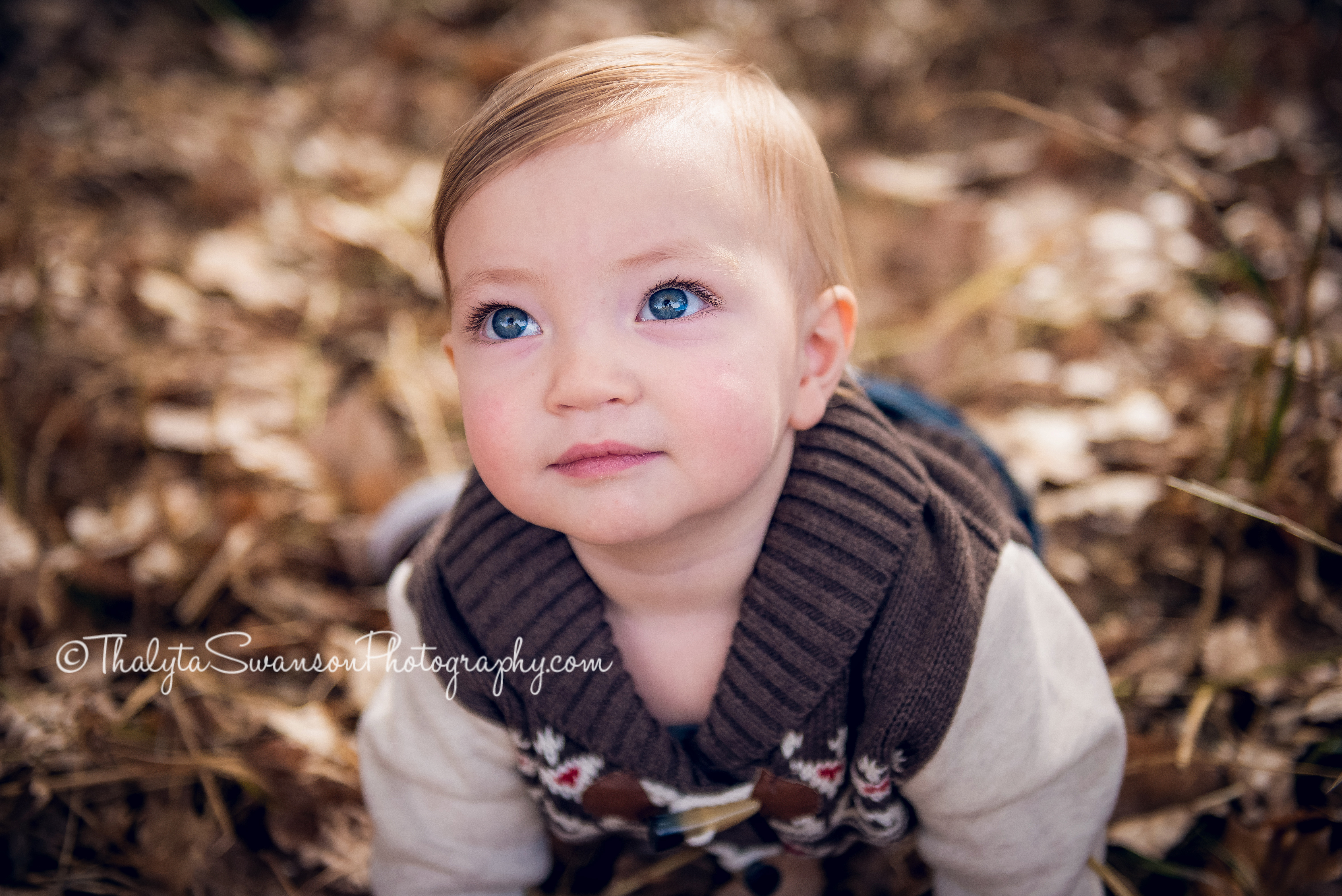 fort-collins-photographer-thalyta-swanson-photography-fall-mini-session-2